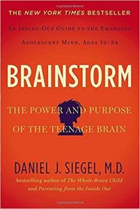 Book Cover: Brainstorm