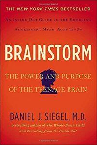 Book Cover: Brainstorm