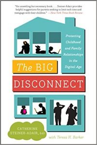 Book Cover: Big Disconnect